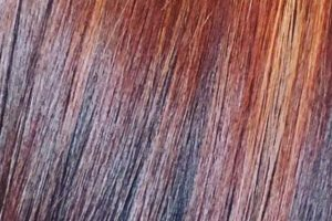 hair-colour-sample-4