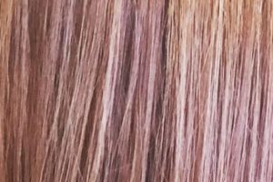 hair-colour-sample-6
